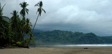 Stillehavskysten ved Domnical, Costa Rica