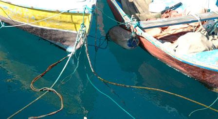 Fiskerbåde, Puerto de Mogán