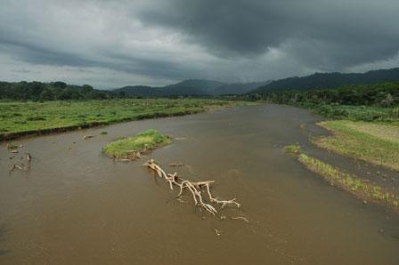 Tarcoles River, Costa Rica, april 2005